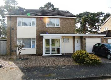 Thumbnail 4 bed detached house for sale in St. Helena Walk, Mildenhall, Bury St. Edmunds