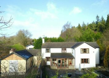 Thumbnail 4 bed detached house for sale in Clements End, Coleford