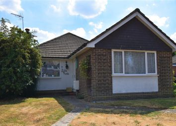 Thumbnail 3 bed bungalow to rent in Whopshott Close, Horsell, Woking