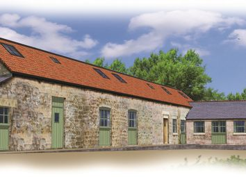 Thumbnail 3 bed barn conversion for sale in Springfield Farm, Belph, Worksop