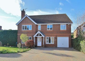 Thumbnail 5 bed detached house for sale in Danesfield, Ripley, Woking