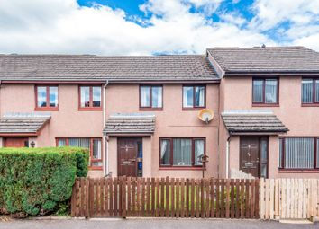 Thumbnail 3 bed terraced house for sale in Millgate, Friockheim