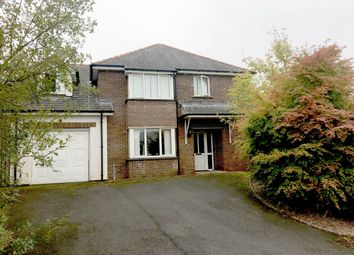 Thumbnail 4 bed property to rent in 5 Clos Cadno, Llanilar, Aberystwyth