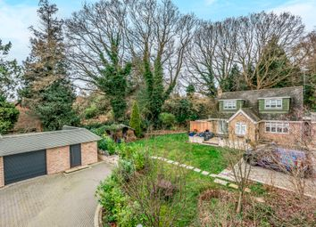 Thumbnail 4 bed detached house to rent in Baskerville, Snow Hill, Crawley Down, West Sussex