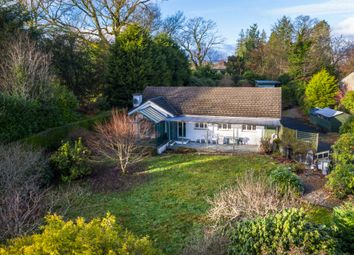 Thumbnail 4 bed detached bungalow for sale in Beech Hedge, Old College Lane, Windermere