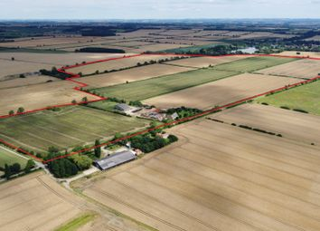 Thumbnail Farm for sale in Arable Farm, Fillingham, Gainsborough, Lincolnshire