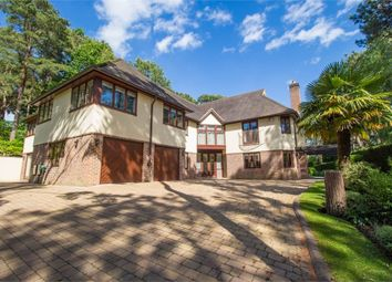 Thumbnail 5 bedroom detached house for sale in Bury Road, Branksome Park, Dorset