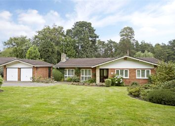 Thumbnail 3 bedroom detached bungalow for sale in Spinney Close, Cobham, Surrey