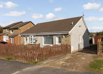 Thumbnail 1 bed bungalow for sale in Macdonald Grove, Bellshill, North Lanarkshire