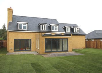 Thumbnail 5 bedroom detached house for sale in Hutton Grange, North Drive, Hutton, Brentwood, Essex