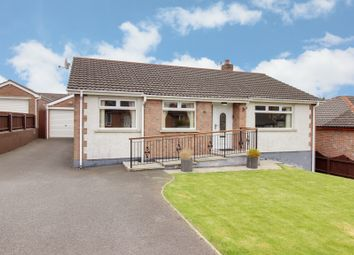 Thumbnail 3 bedroom detached bungalow for sale in Regency Drive, Newtownards