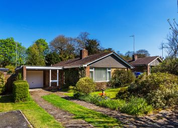 Thumbnail 2 bed detached bungalow for sale in The Close, Reigate