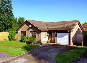 Thumbnail 3 bed detached bungalow for sale in Colliers Lane, Wool BH20.