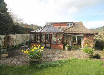 Thumbnail 3 bed detached bungalow for sale in Latchen, Longhope
