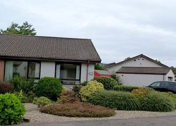 Thumbnail Bungalow to rent in Brontonfield Drive, Bridge Of Earn, Perth