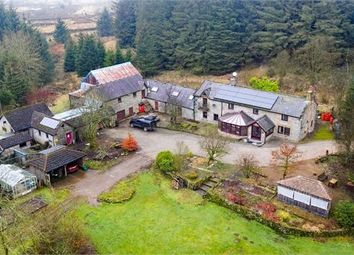 Thumbnail 5 bed detached house for sale in Paddaburn House, Gilsland, Cumbria.