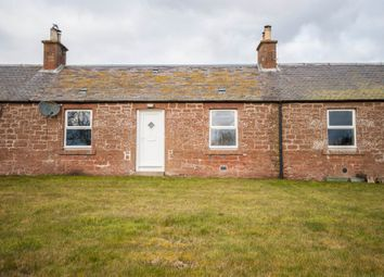 Thumbnail 2 bed terraced house to rent in Fern, Brechin, Angus