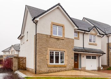 Thumbnail 4 bed detached house for sale in Millview Close, Auchterarder