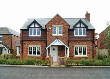 Thumbnail 4 bed detached house for sale in 5 St Elphins View, Hatton, Cheshire