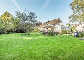 Thumbnail 3 bedroom detached bungalow for sale in Thornden, Cowfold, Horsham