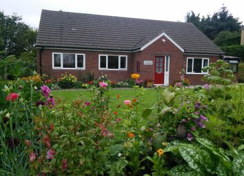 Thumbnail 4 bedroom detached bungalow for sale in Hatfield Meadow, Knighton