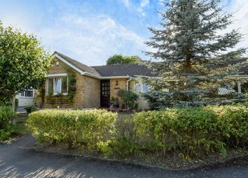 Thumbnail 4 bed detached bungalow for sale in Englefield Green, Surrey
