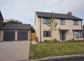 Thumbnail 4 bed detached house for sale in White Rock Road, Paignton