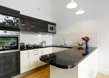 Thumbnail 3 bed flat to rent in Clarence Lane, London