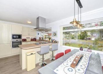 Thumbnail 4 bed link-detached house to rent in Spitalfields, Yarm