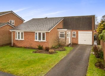 Thumbnail 3 bed detached bungalow for sale in Beech Drive, Ashbourne