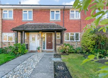 Thumbnail 3 bed terraced house for sale in Wychelm Road, Lightwater, Surrey