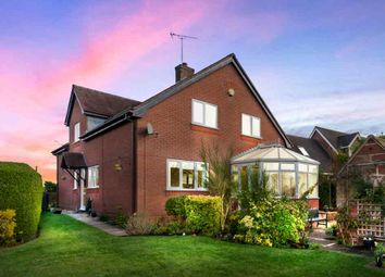 Thumbnail 5 bedroom detached house for sale in Myddle Hill, Myddle, Shrewsbury