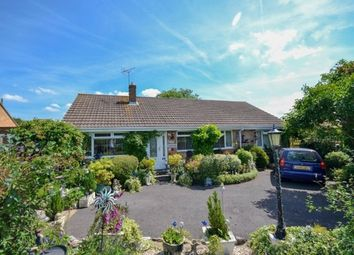 Thumbnail 4 bed detached bungalow for sale in Lynch Road, Berkeley