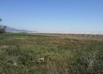 Thumbnail Land for sale in Pareton, Murcia, Spain