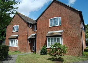 Thumbnail 1 bed flat to rent in Flat 5, 1 Taverner Close, Southampton