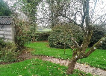 Thumbnail 3 bedroom property to rent in Chedington, Beaminster
