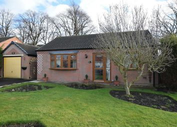 Thumbnail 2 bed detached bungalow to rent in The Paddock, Blackwell, Alfreton, Derbyshire