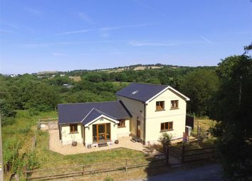Thumbnail Detached house to rent in Felinfach, Lampeter