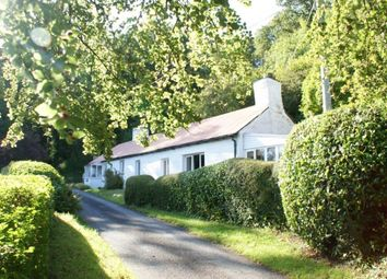 Thumbnail Cottage for sale in Bangor Teifi, Llandysul