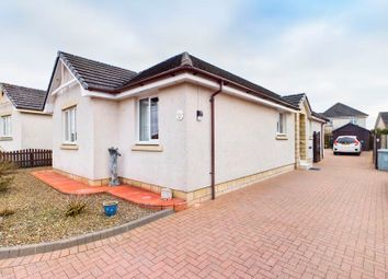 Thumbnail 3 bed detached bungalow for sale in White Craw Court, Carnwath, Lanark
