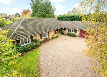 Thumbnail 4 bed bungalow for sale in Bearswood End, Beaconsfield