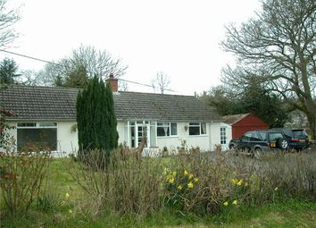 Thumbnail 4 bed detached bungalow to rent in Whitestone, Exeter