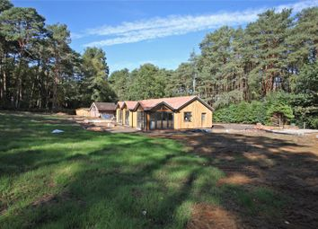 Thumbnail 4 bed detached bungalow for sale in Tilford Road, Tilford, Farnham, Surrey