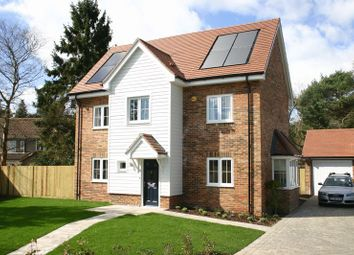 Thumbnail 5 bed detached house to rent in Coppicefield Gardens, Bitterne, Southampton