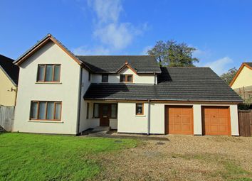Thumbnail 5 bed detached house for sale in Riverside, Llanddowror, St. Clears, Carmarthenshire