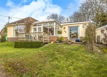 Thumbnail 3 bedroom bungalow for sale in Jacklyns Lane, Alresford, Hampshire