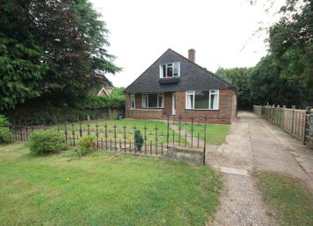 Thumbnail 4 bed property to rent in Farley Green, Albury, Guildford