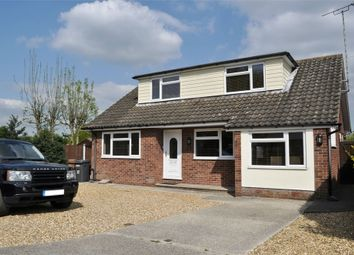 Thumbnail 4 bed detached bungalow for sale in Longmore Avenue, Great Baddow, Chelmsford, Essex