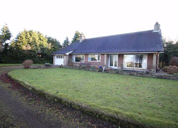 Thumbnail 3 bed detached bungalow for sale in Station Road, Piercebridge, County Durham