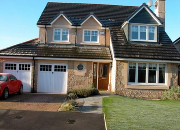 Thumbnail 4 bed detached house to rent in Wyness Place, Kintore AB51,